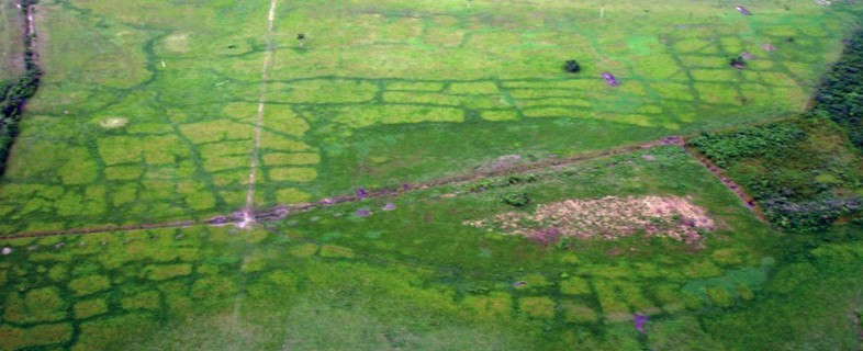 De Maya's waren uitmuntende landbouwers en wisten hoe ze aan irrigatie moesten doen. Stille getuigen hiervan zijn nog steeds zichtbaar vanuit de lucht © Maya Research Program