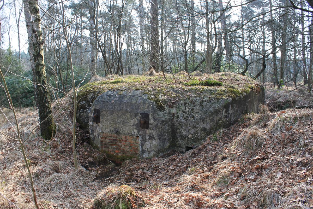 Een kanonsbunker in het Mastenbos © Wouter Gheyle
