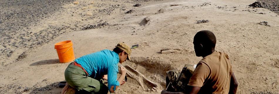 Onderzoekers aan het werk tijdens het vrijleggen en registreren van een skelet © University of Cambridge
