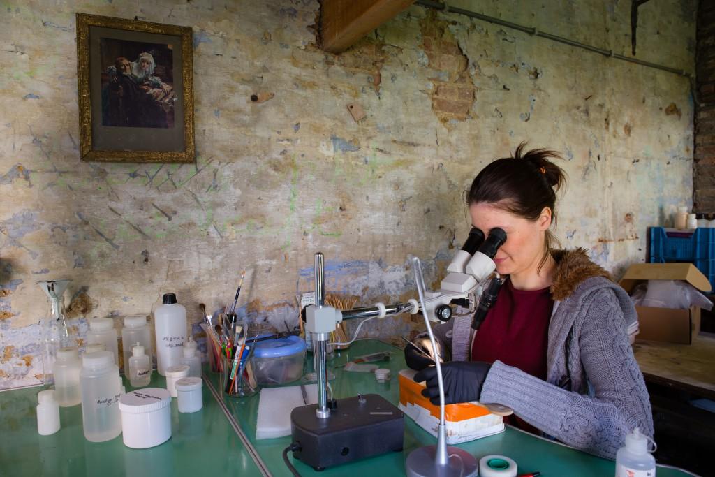 Ansje Cools aan het werk aan de microscoop (© Dirk Wollaert)